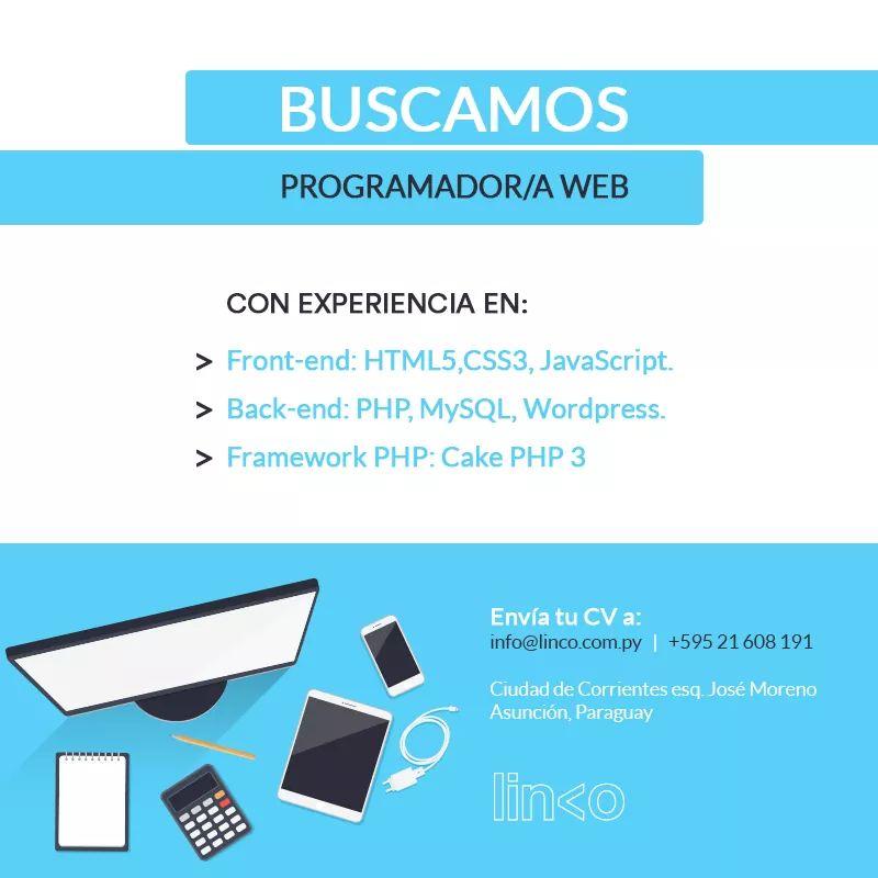 programador-web-linco